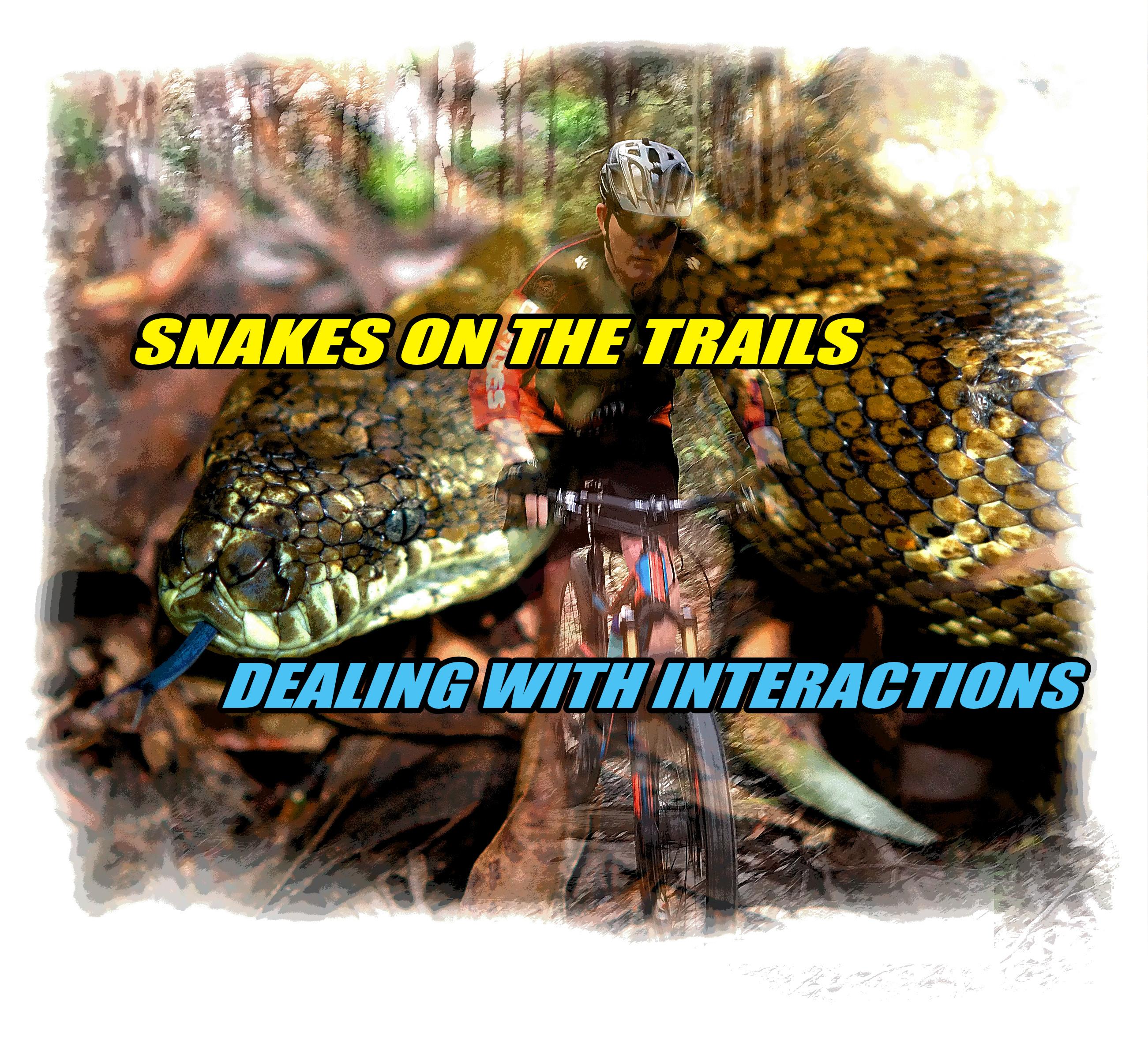 Snakes on the trail mtb mountain biking